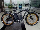 [1000و] جبل كهربائيّة دراجة دهن إطار العجلة
