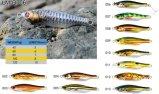 La haute a avancé l'attrait réaliste estampé de pêche de configuration réaliste de poissons