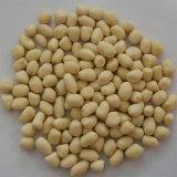 Meilleur prix usine chinois de grain d'arachide, arachide