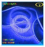 Hete LEIDENE van de Verkoop 120V/220V IP65 RGBW Strook met de Certificatie van Ce RoHS ETL
