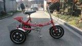 """La venta caliente 16 """"Pedal asistida por carretera triciclo (YK-TC-001)"""