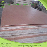 Pappel/Hardwood Core Bbcc Grade 3.6mm Bintangor Plywood mit Cheap Price
