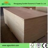 [شندونغ] صاحب مصنع من [شوتّرينغ] خشب رقائقيّ لأنّ بناء