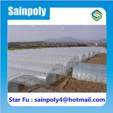 Estufa de túnel de venda quente para frutas de flor de vegetais