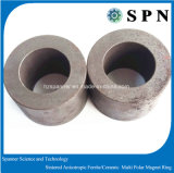 モーターのための異方性亜鉄酸塩の磁石のMultipoleリング