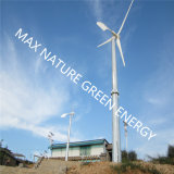 Max único gravedad de la cola de la turbina de viento Diseño Pequeño