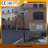 Réverbère solaire de qualité avec le panneau solaire (12W)