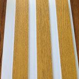 木パターン熱い押すPVCパネルPVC天井板および壁パネル(RN-175)