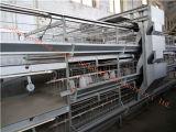 Certificat automatique galvanisé de cage de poulette d'ISO9001