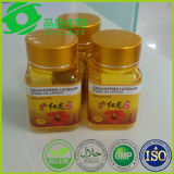 Private Label biologische certificering Ganoderma Lucidum Spore Powder Capsule
