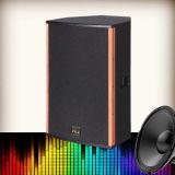 RF-1560 scelgono 15 pollici del professionista bidirezionale dell'intervallo completo di altoparlante stereo di PA