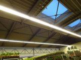 Flicker-Free LED 선형 고정편 전등 설비 (Hz XTGKD45W)