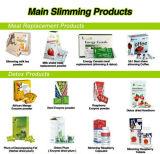 Gewicht-Verlust GMP-Bescheinigungs-Pflanzenauszug-Diät-Pillen