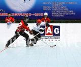 Suelo modular de la corte del hockey del polipropileno (profesional de Hockey-Champion/)