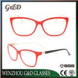 Het populaire Frame Cc1705 van de Glazen van het Oogglas Eyewear van de Acetaat In het groot Optische