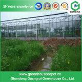 Estufa de Polytunnel do PE dos vegetais do túnel da agricultura para a venda