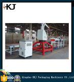 Noodle Automatic Carton Packing Line / Packing Machine com alta qualidade