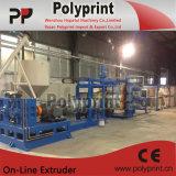 Linha plástica da extrusão da folha da boa qualidade (PPSJ-100A)