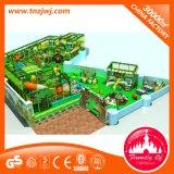 Het multifunctionele Binnen Ongehoorzame Kasteel van de Speelplaats voor Jonge geitjes