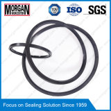 Grande/grande/del diametro gomma guarnizione di alta qualità su ordinazione