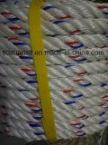 Brins de vente chauds de la corde 4 de pp Danline avec le faisceau