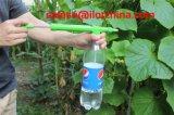 [إيلوت] بلاستيكيّة يدويّة [فليت] متردّدة كولا زجاجة [فلوور غردن] مرشّ