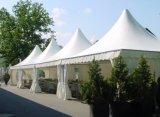 [ودّينغ برتي] [بغدا] [بغدا] خيمة ألومنيوم إطار [بغدا] حديقة حجارة [بغدا] حزب خيمة