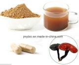 高品質Lingzhi/Reishi/Ganoderma Lucidumのシェル壊れた胞子粉