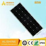 indicatore luminoso solare diretto della fabbrica 5W-120W nuovo per la via dell'iarda del giardino