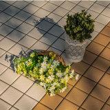 Europäischer Standard-neues Modell Porcellanato Hall Bodenbelag-Fliese-Entwurfs-heißer Verkauf auf Mexikaner