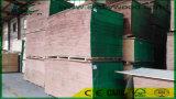 Chapa de EV y madera contrachapada de la chapa de la fabricación de Linyi