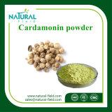 98% Cardamoninのカルダモンのエキスの粉をよ販売しなさい