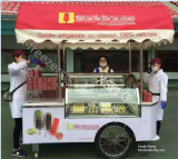 Gelato Vending Cart with Wheels / Beach Trolley Cart / Ice Cream Display Showcase Congélateurs (CE approuvé)