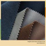 O plutônio de couro do vestuário reuniu o material