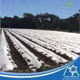 농업 작물 덮개를 위한 UV 취급된 PP 짠것이 아닌 직물