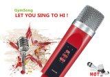 Systeem van de Microfoon van de Karaoke van het Huis van de Microfoon Bluetooth van Gymsong het Mobiele Draadloze