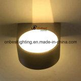 Indicatore luminoso esterno della parete dell'indicatore luminoso IP65 14W LED di vendite calde