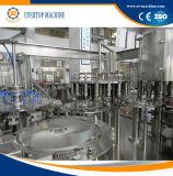 Terminar el proyecto caliente de la planta del jugo automático