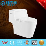 Efficacité Économique Double Flush Modern Design Toilet Bowl