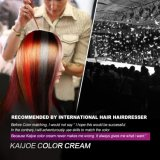 Low Ammonia Tendencia de moda Intensive Hair Care Color de pelo