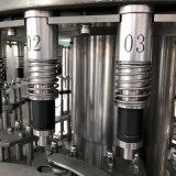 Planta da máquina da suficiência da água bebendo do campeão da venda