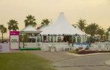 Шатры венчания партии Waterrpoof шатров семьи сада шестиугольника