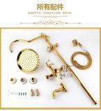 Conjunto de cobre amarillo de la ducha del nuevo del diseño solo jade de la maneta Zf-701