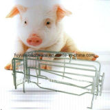 El animal de la cerca del cerdo enjaula los embalajes de /Farrowing para el cerdo (la fábrica)