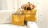 Bolsa mais barata de couro colorida das mulheres do plutônio da forma da personalização