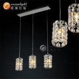 Großhandelsleuchter-hängende Licht-justierbare hängende Lampe Om88147