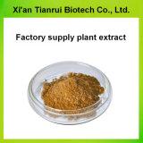 Fabrik-Zubehörbitterer Sophora-Wurzel-Auszug natürliches Oxymatrine