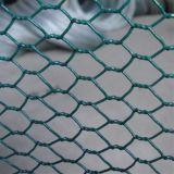 PVC上塗を施してある六角形の金網の塀か鶏の塀