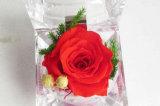 Rose de acrílico clara al por mayor florece las cajas de presentación
