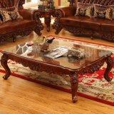 Il sofà di cuoio ha impostato per la mobilia del salone (D525)